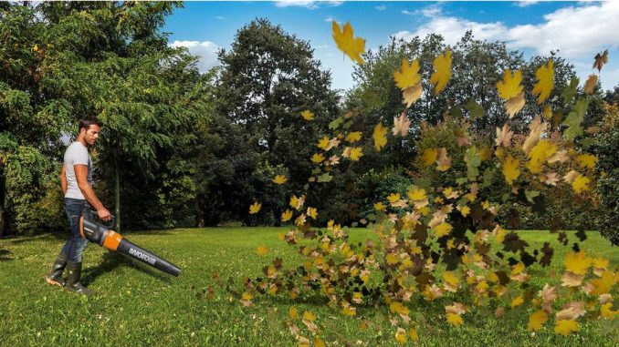 featured image for 7 Best Cordless Leaf Blowers to Buy in 2018